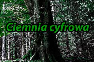 ciemnia-cyfrowa
